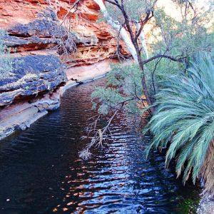 Kings Canyon Fluss, Australien, Ayers Rock, Uluru, www.soultravelista.de