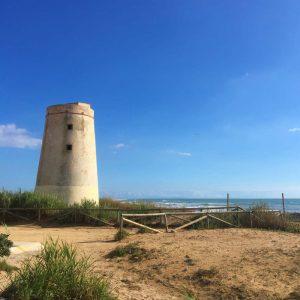 Torre El Palmar