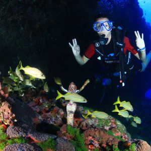 Diving Fernando de Noronha