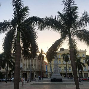 Sunset am Plaza Central