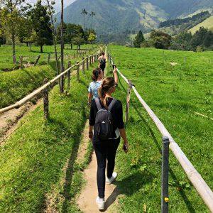 Wanderung im Cocora Valley